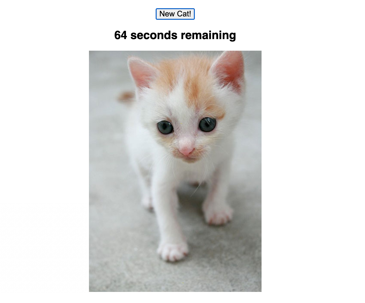 A screenshot of the app with a countdown and a picture of a cat.
